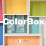 ColorBox By Caselio
